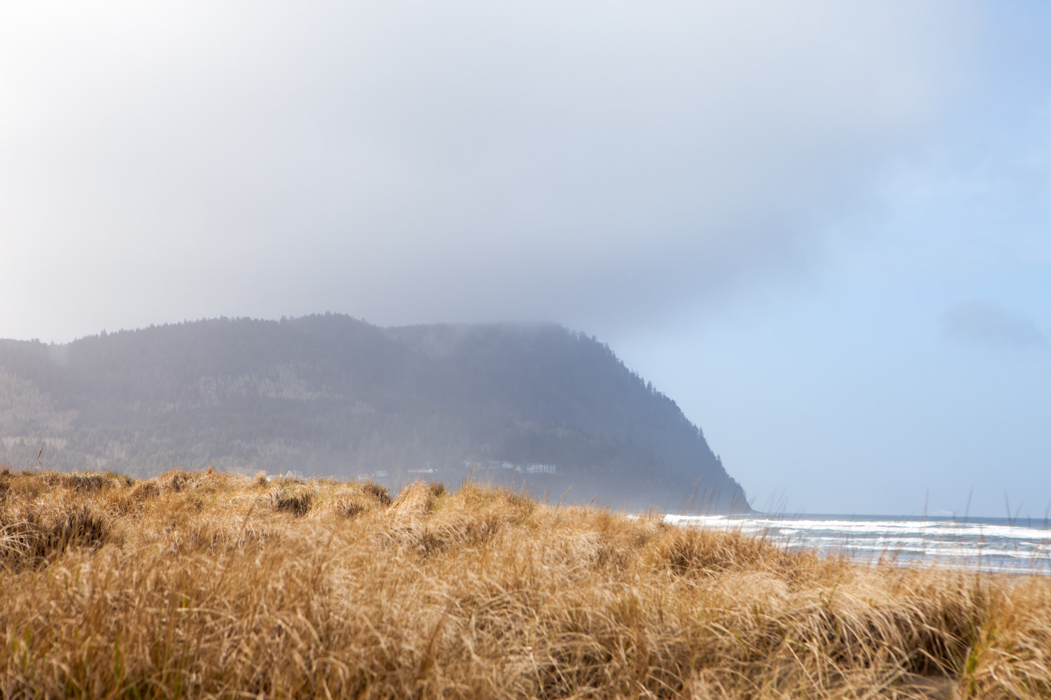 Dunes in Seaside, Oregon